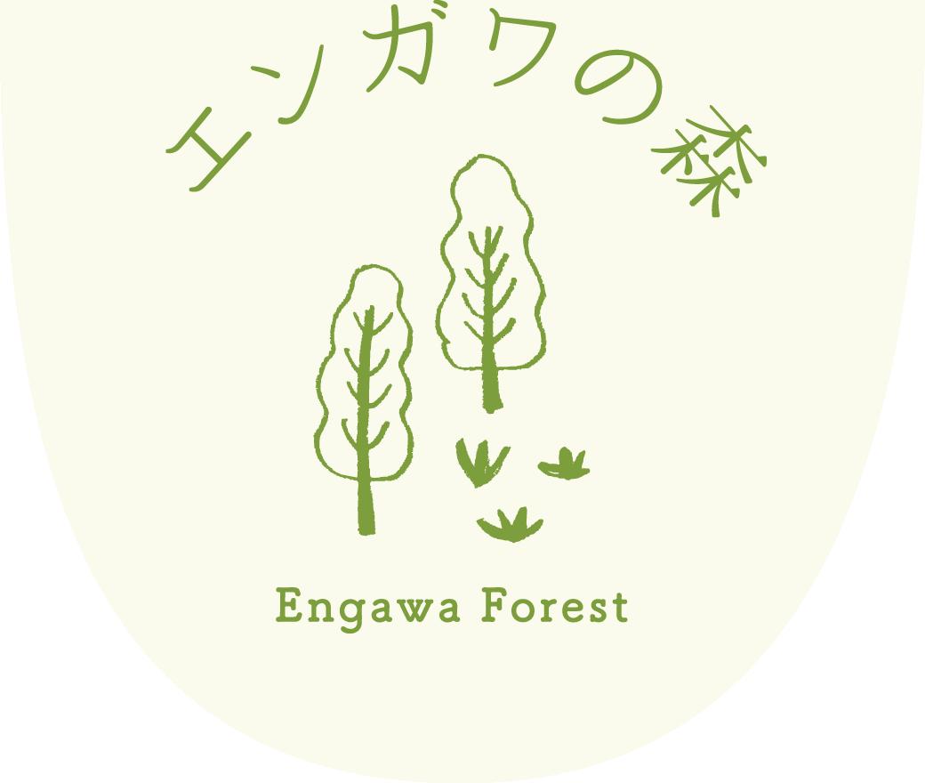 妊活、産後ケア、体質改善に、福山市でリフレクソロジー|エンガワの森